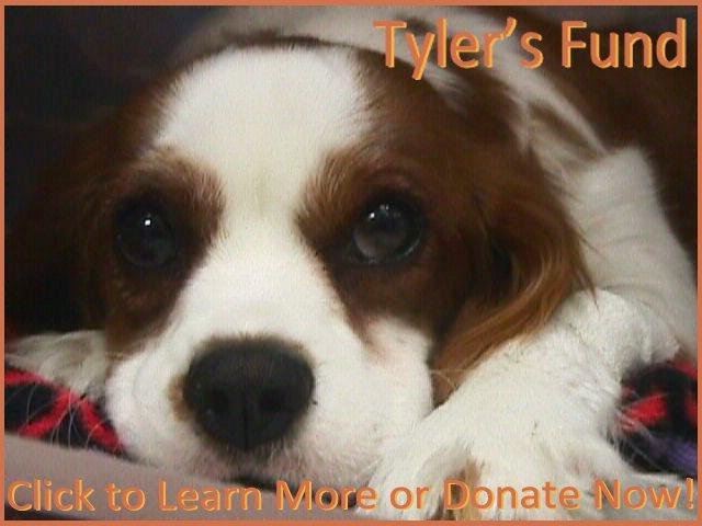 Tylers Fund Logo